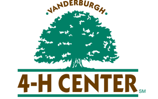 4H Center Logo Design